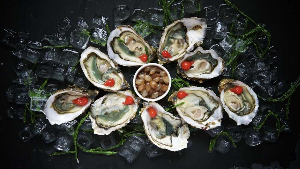 oysters, Oysters Aphrodisiac
